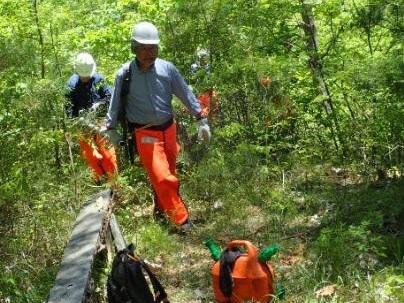 今、森林整備事業部は 5月