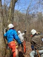 4月からの森林整備風景
