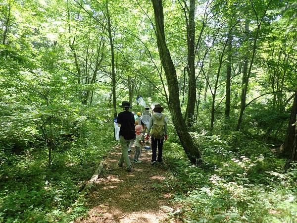 7月28日 子供達の森の体験