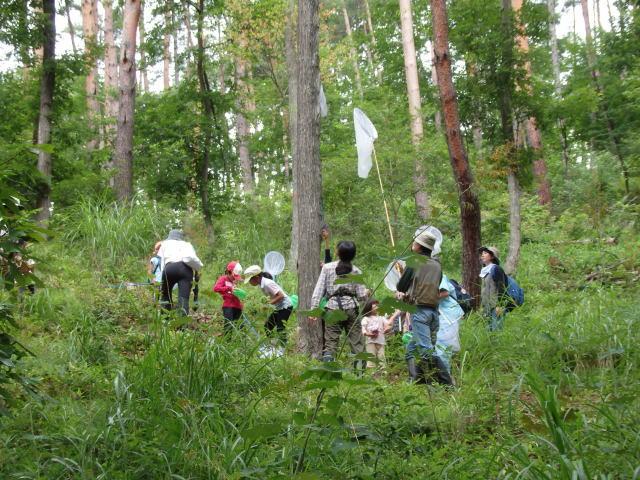 7月28日 子供たちの森の体験 参加者募集