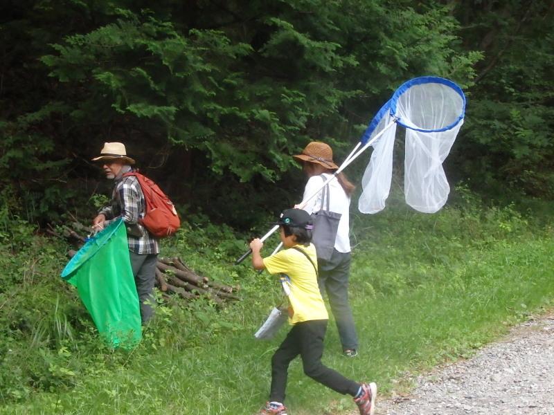 ちの旅「市民の森でいきもの探し」8月