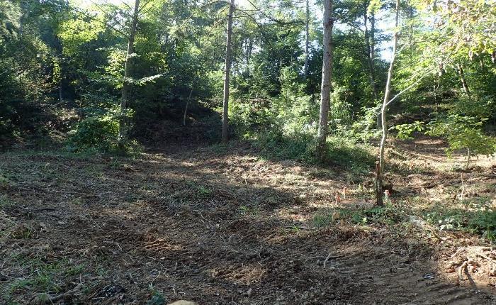 今、森林整備事業部は 9月
