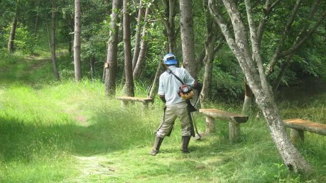 7月14日 市民の森散策路整備参加者募集のお知らせ