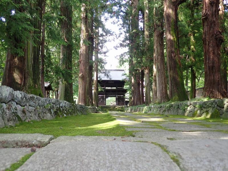 10月18日 森林文化見学会 参加者募集