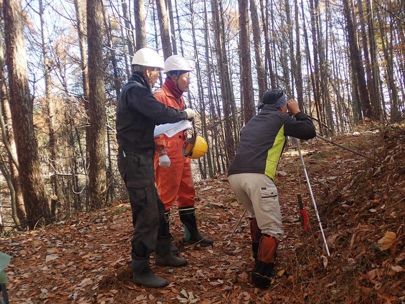 今、森林整備事業部は 11月