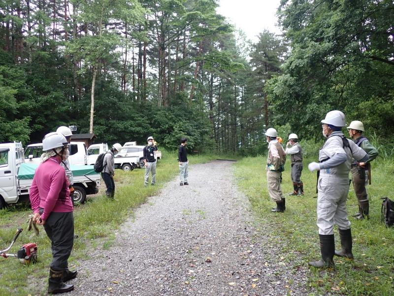 7月9日 市民の森 散策路整備