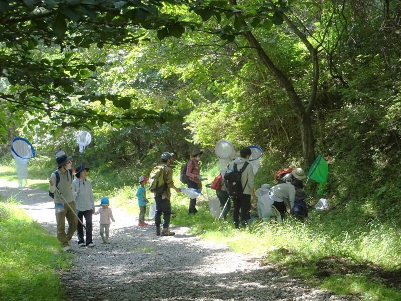 7月25日 子供たちの森の体験