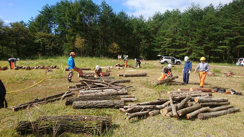 10月17日 秋の薪づくり講習会 参加者募集