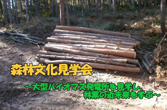 11月17日 森林文化見学会 参加者募集